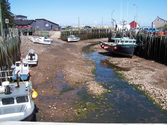 Halls Harbor Low Tide