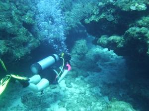 Leslie under the bridge dive