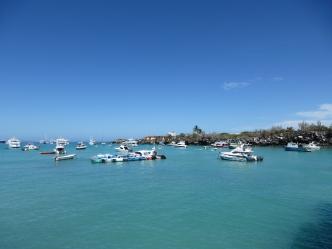 Puerto Ayora harbor